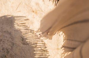 セニングバサミを横に入れた失敗例イメージ